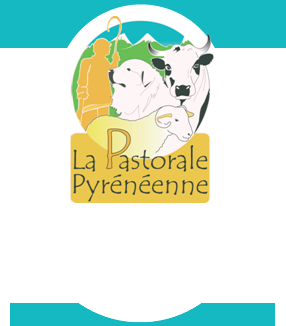 http://www.pastoralepyreneenne.fr/images/interface/fond_banniere.png
